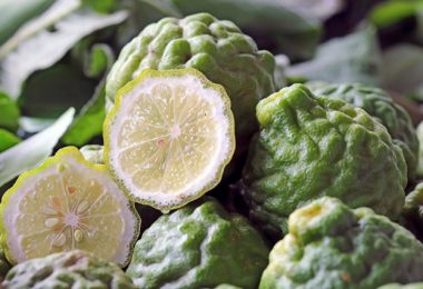 Bergamot Benefits